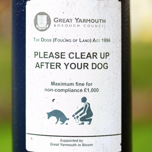 Yarmouth crap