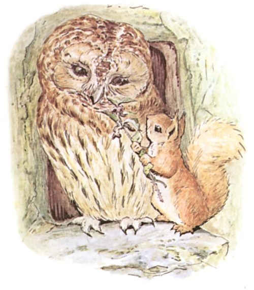 10-color-drawing-of-squirrel-giving-owl-a-flower
